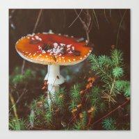 mushroom Canvas Prints featuring Mushroom  by crrissttian