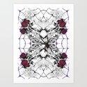 Roses Black Widow by melasdesign