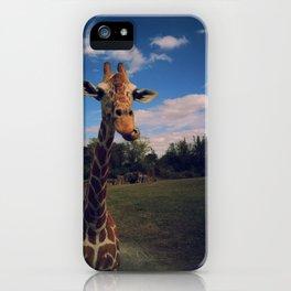 Giraffe safari iPhone Case