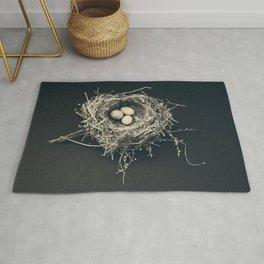 bird nest Rug