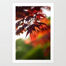 Autumn 4344 Art Print