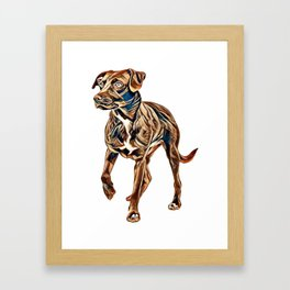 Labrador Mix, Canis Familiaris Isolated on White        - Image Framed Art Print