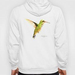 Hummingbird I Hoody