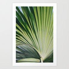 Palm I Art Print
