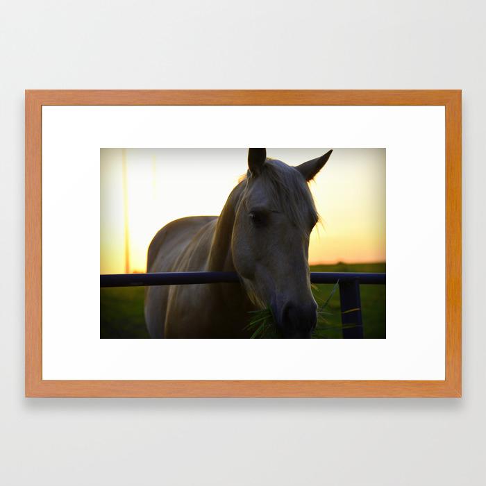 Beautiful Horse At Sunset Framed Art Print By Shadesofgreen26 Society6