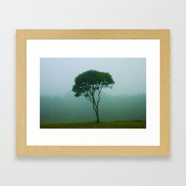 Fog Tree Framed Art Print