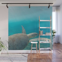 Pacific Pet Wall Mural