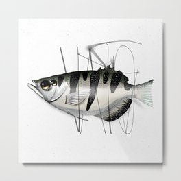 Tag on Fish Metal Print