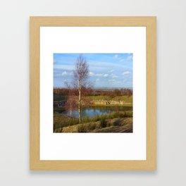 Birch by the Lake Framed Art Print