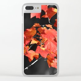 Cold Fall Clear iPhone Case