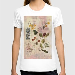 Botanical Study #1, Vintage Botanical Illustration Collage T-shirt