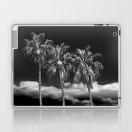 Palm Trees in Black and White on Cabrillo Beach Laptop & iPad Skin