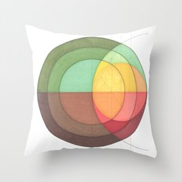 Concentric Circles Forming Equal Areas Throw Pillow