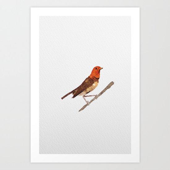 Messenger 006 Art Print