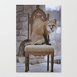 Fox on a Throne Canvas Print