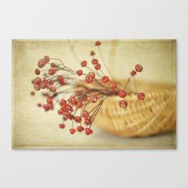 Rose Hips Canvas Print