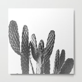 Cactus Photography Print {3 of 3} | B&W Succulent Plant Nature Western Desert Design Decor Metal Print