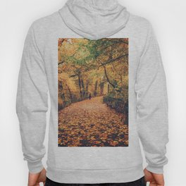 Autumn Walk New York City Hoody