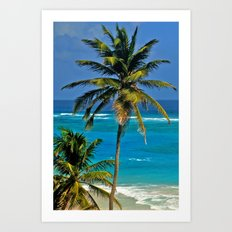 SEA DREAMING Art Print