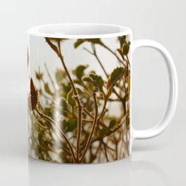 Sunset Flowers Coffee Mug
