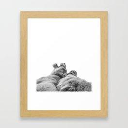 Lion Photography | Animal Art | Love | Black and White Framed Art Print