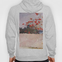 A Wall Nassau 1898 By WinslowHomer | Reproduction Hoody