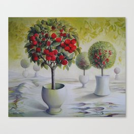Cherry orchard Canvas Print