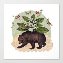 To Where Said the Bear Canvas Print