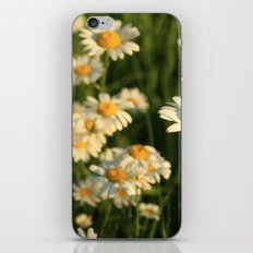 Field of Happiness iPhone & iPod Skin