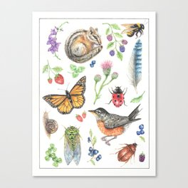 Flora and Fauna of Summer Canvas Print
