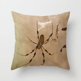 Florida banana Spider Throw Pillow