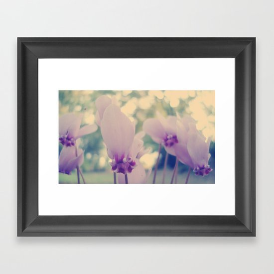 cyclamen Framed Art Print