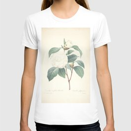 camellia japonica, 2 Redoute Roses 4 T-shirt
