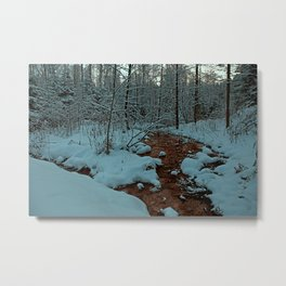 forest / silent life Metal Print