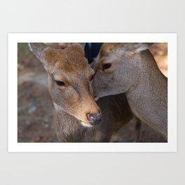 Deer Secrets Art Print