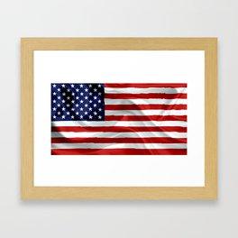 The American Flag Framed Art Print