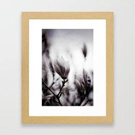 Flower Of The Aquitane Framed Art Print