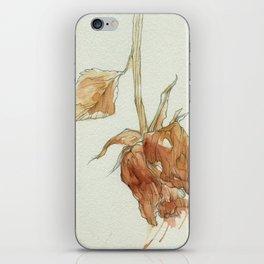 fall rose iPhone Skin