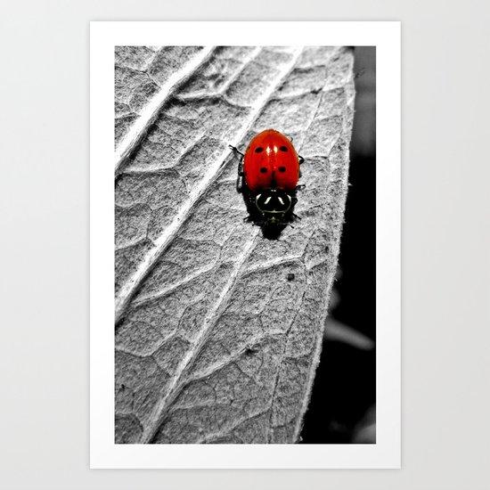 Ladybug Art Print