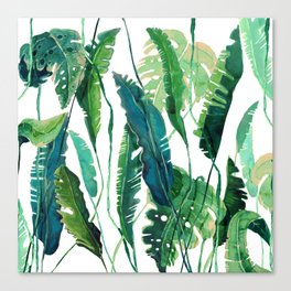 tropical compilation Canvas Print
