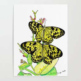 Black & Yellow Butterfly Poster