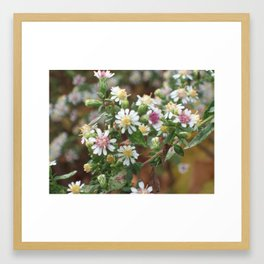 Pink and Yellow Framed Art Print