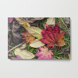 Leaf it out Metal Print