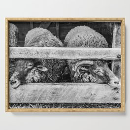 Two Little Sheep Serving Tray