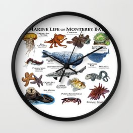 Marine Life of Monterey Bay Wall Clock