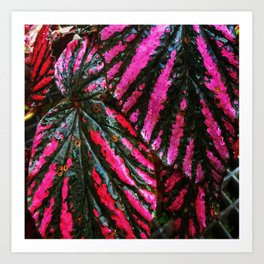 Red and Green Leaf Pattern Art Print