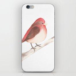 Chubby Finch iPhone Skin
