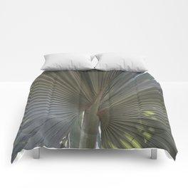 Gray Frond DP150314-16 Comforters