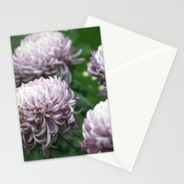 Longwood Gardens Autumn Series 275 Stationery Cards