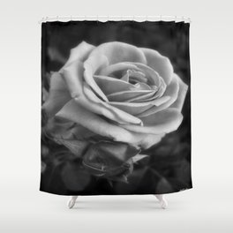 Pink Roses in Anzures 2 B&W Shower Curtain